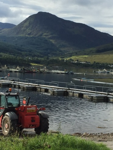 Farm sites on Loch Leven