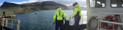 The Scottish Salmon Co